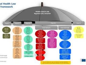 Illustrasjon struktur av underliggende forordninger til dyrehelseforordningen AHL